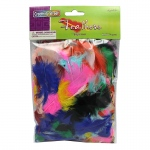 (12 Pk) Feathers Bright Hues