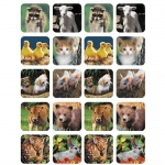 (12 Pk) Baby Animals Real Photos Theme Stickers