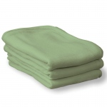 (2 Ea) Thermasoft Blanket Mint