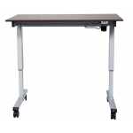 "Luxor 48"" Electric Standing Desk"