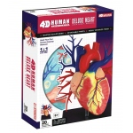 Tedco Science Toys Human Anatomy - Deluxe Heart Model