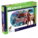 Tedco Science Toys 4D Vision Horse Anatomy Model