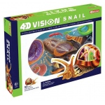 Tedco Science Toys 4D Vision Snail Anatomy Model