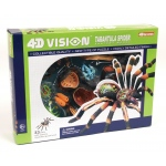 Tedco Science Toys 4D Vision Tarantular Spider Anatomy Model