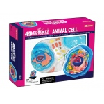 Tedco Science Toys 4D Science Animal Cell Anatomy Model