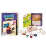 Tedco Science Toys Gems Treasure Dig