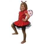 Aeromax Junior Lady Bug with Detachable Wings & Antenna Headband: Size for 6 to 8 Years