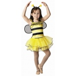 Aeromax Bee with Detachable Wings & Antenna Headband: Size for 4 to 6 Years
