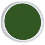 Center Enterprises Jumbo Circular Washable Paint/Ink Pad: Green, 6""