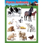 Learning Chart Farm Animals