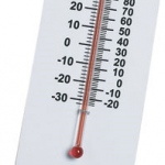 Didax 50 Student Thermometers - Volume Pricing: Grades K-12