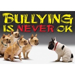 Bullying Is Never Ok Argus Large Poster