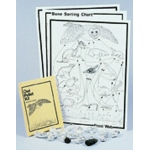 Owl Pellet Kit Classroom Kit