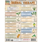 BarCharts Herbal Therapy Quick Study Guide