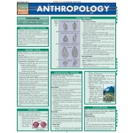 BarCharts Anthropology Quick Study Guide