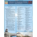 BarCharts Bible Characters:New Testament Quick Study Guide